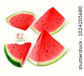 illustration of watermelon. set ... | Shutterstock .eps vector #1024205680