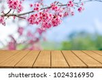 empty top wooden table and... | Shutterstock . vector #1024316950