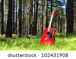 Guitar Acoustic In The Grass I...