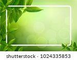 green tea leaves vector nature... | Shutterstock .eps vector #1024335853