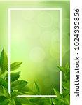 green tea leaves vector nature... | Shutterstock .eps vector #1024335856