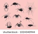 spider black poses cute cartoon ... | Shutterstock .eps vector #1024340944
