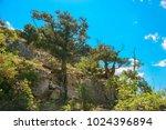 beautiful summer sea landscape...   Shutterstock . vector #1024396894