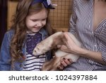 family in the contact zoo  the... | Shutterstock . vector #1024397884