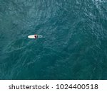male surfer sits on the... | Shutterstock . vector #1024400518