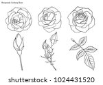 rose vector set by hand drawing.... | Shutterstock .eps vector #1024431520