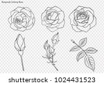 Stock vector rose vector set by hand drawing beautiful flower on white background rose art highly detailed in 1024431523