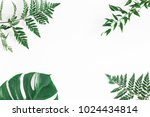 leaf pattern. green tropical... | Shutterstock . vector #1024434814