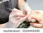 manicure in process | Shutterstock . vector #1024443430