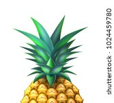 pineapple closeup realistic... | Shutterstock .eps vector #1024459780