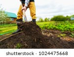 gardener is digging soil with a ... | Shutterstock . vector #1024475668