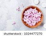 beauty  spa and wellness... | Shutterstock . vector #1024477270