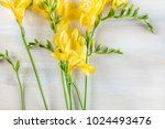an overhead photo of yellow...   Shutterstock . vector #1024493476