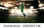 kid   soccer player. boy... | Shutterstock . vector #1024501738