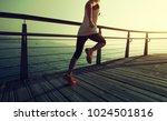 sporty fitness female runner... | Shutterstock . vector #1024501816