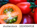 tomatoes on wooden table. | Shutterstock . vector #1024504918