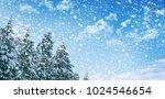 blurred background. frozen... | Shutterstock . vector #1024546654
