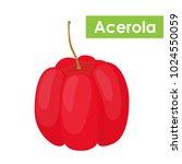 vector acerola berry  barbados... | Shutterstock .eps vector #1024550059