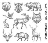wild animals sketch icons of... | Shutterstock .eps vector #1024550596