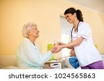 careful young nurse brings... | Shutterstock . vector #1024565863