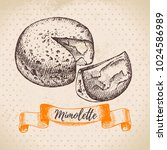 hand drawn sketch mimolette... | Shutterstock .eps vector #1024586989