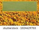 bright flowers nursery with... | Shutterstock . vector #1024629703
