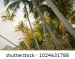 best beaches of thailand  | Shutterstock . vector #1024631788