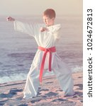 handsome boy doing karate at... | Shutterstock . vector #1024672813