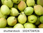 coconuts in asian market | Shutterstock . vector #1024736926