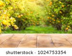 wood table top with blur of... | Shutterstock . vector #1024753354