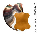 samples of artificial leather... | Shutterstock . vector #1024804423