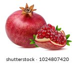 fresh pomegranate isolated on... | Shutterstock . vector #1024807420