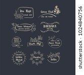 vector set of handdrawn floral... | Shutterstock .eps vector #1024840756