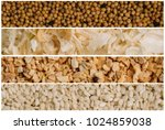 collage of various spice seeds. ... | Shutterstock . vector #1024859038