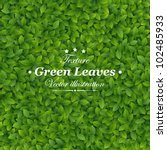 green leaves texture. vector... | Shutterstock .eps vector #102485933