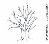 tree silhouette on white... | Shutterstock .eps vector #1024888054