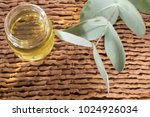 oil and fresh eucalyptus leaves ... | Shutterstock . vector #1024926034