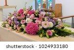 closeup shot of a colorful... | Shutterstock . vector #1024933180