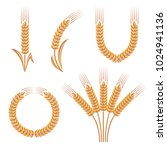 ears of wheat and rye set.... | Shutterstock .eps vector #1024941136