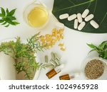 alternative herb medicine.... | Shutterstock . vector #1024965928