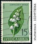yugoslavia   circa 1963  post... | Shutterstock . vector #1024978066