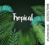 tropical and exotic palms leafs | Shutterstock .eps vector #1025017048