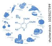 foods rich in vitamin b6.... | Shutterstock .eps vector #1025027599