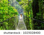 hiking in green tropical jungle ... | Shutterstock . vector #1025028400