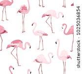 pink red exotic flamingo birds...   Shutterstock .eps vector #1025036854