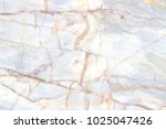 white marble texture background ... | Shutterstock . vector #1025047426