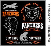 panther sport t shirt graphics  ... | Shutterstock .eps vector #1025048383