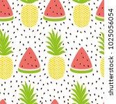 pineapple watermelon simple... | Shutterstock .eps vector #1025056054