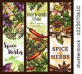 herbs and spices store sketch... | Shutterstock .eps vector #1025070610