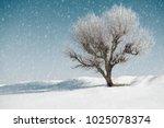 one tree in winter  blue sky... | Shutterstock . vector #1025078374